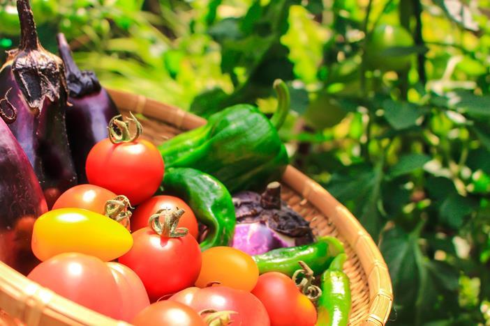 農業って個人事業なの?始める方法と注意すべき点とは?-1_r