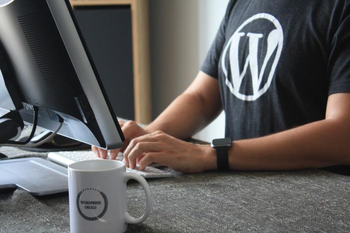 WebライターがWordPressを効率よく覚える方法を元Webクリエイターの私が徹底解説-1_r